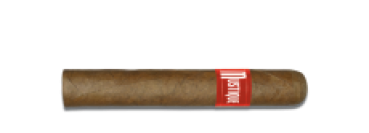 Mustique RED Robusto - 10 Stück - Bundle